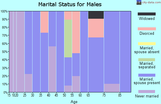 Zip code 15442 marital status for males