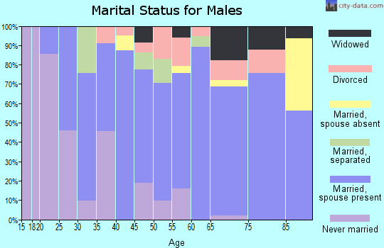 Zip code 15550 marital status for males