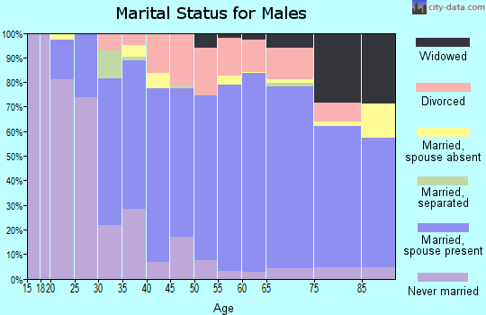 Zip code 15613 marital status for males