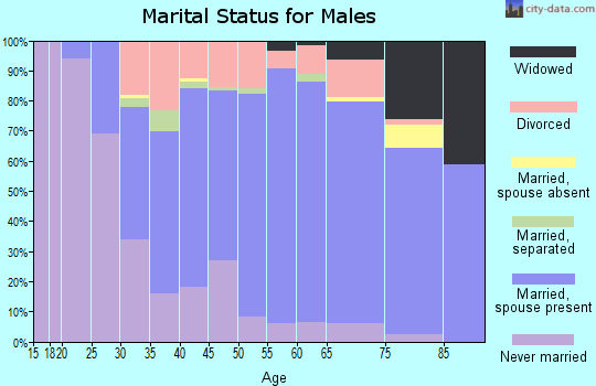 Zip code 15666 marital status for males