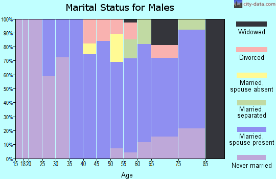Zip code 15673 marital status for males