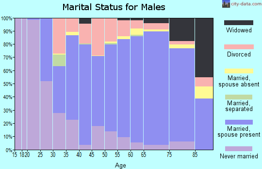 Zip code 15801 marital status for males