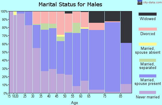 Zip code 15902 marital status for males