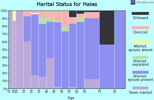 Zip code 15956 marital status for males