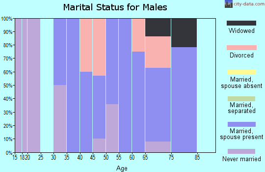 Zip code 15957 marital status for males