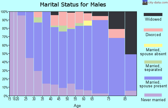 Zip code 16242 marital status for males