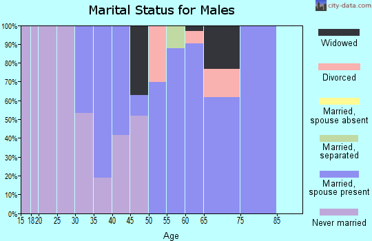 Zip code 16319 marital status for males