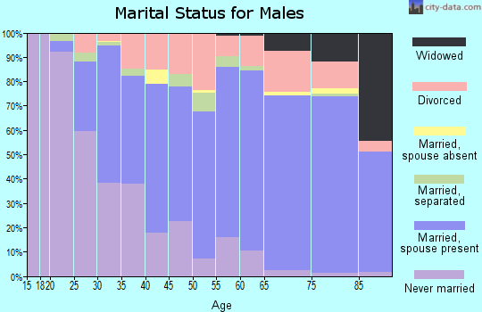 Zip code 16335 marital status for males