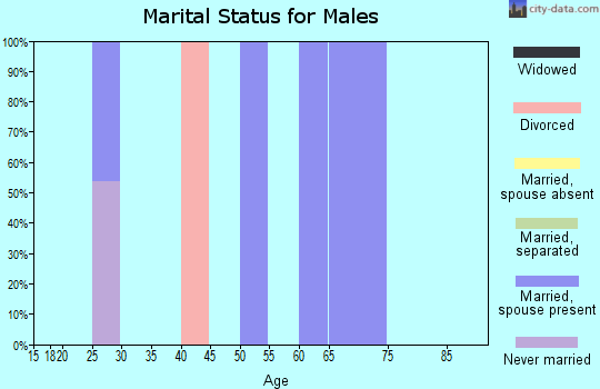 Zip code 16343 marital status for males