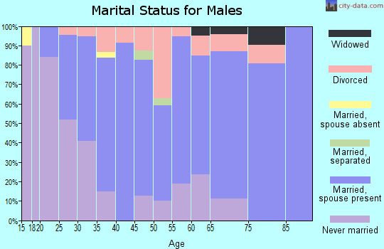 Zip code 16435 marital status for males