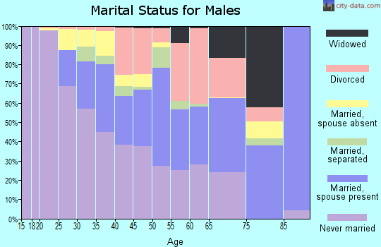 Zip code 16503 marital status for males