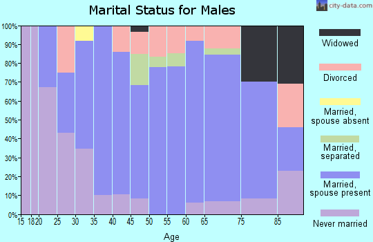 Zip code 16664 marital status for males