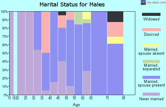 Zip code 16683 marital status for males