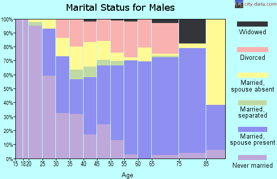 Zip code 16866 marital status for males