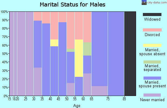 Zip code 16911 marital status for males