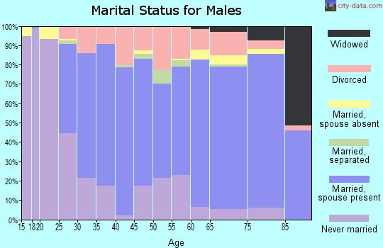 Zip code 16915 marital status for males