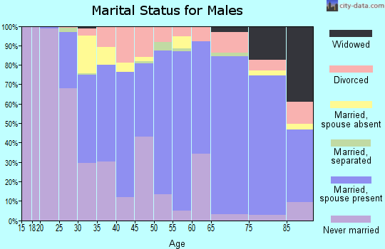 Zip code 17033 marital status for males