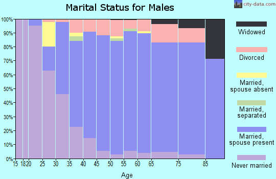 Zip code 17036 marital status for males
