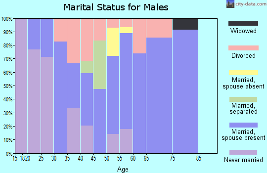 Zip code 17037 marital status for males