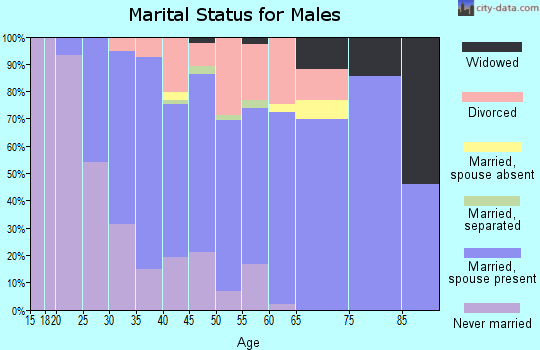 Zip code 17053 marital status for males
