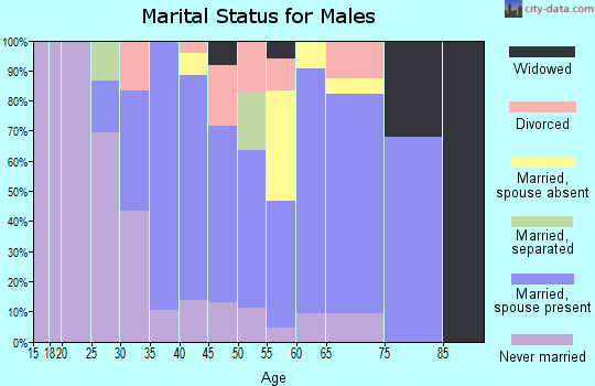 Zip code 17063 marital status for males