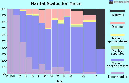 Zip code 17074 marital status for males