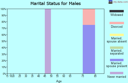 Zip code 17081 marital status for males