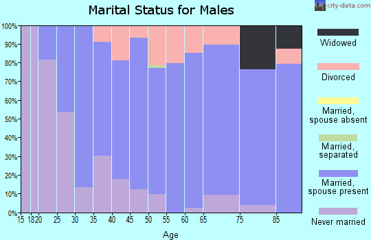 Zip code 17094 marital status for males