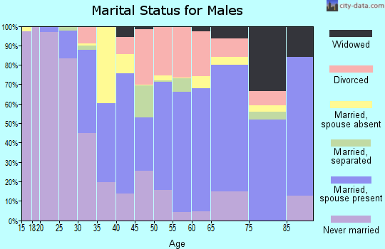 Zip code 17113 marital status for males