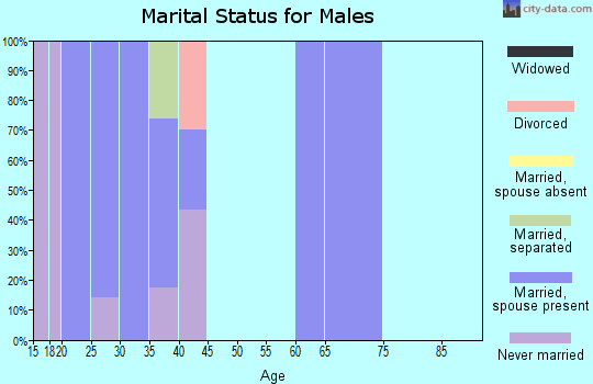 Zip code 17220 marital status for males