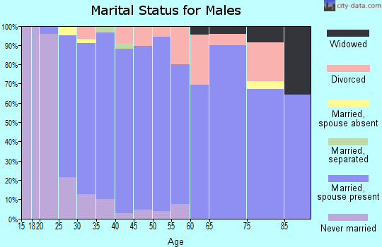 Zip code 17240 marital status for males