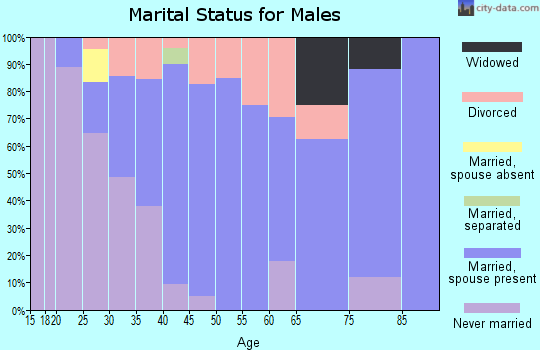 Zip code 17302 marital status for males