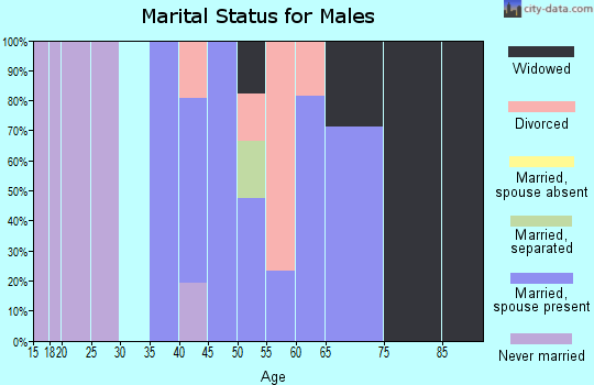 Zip code 17309 marital status for males