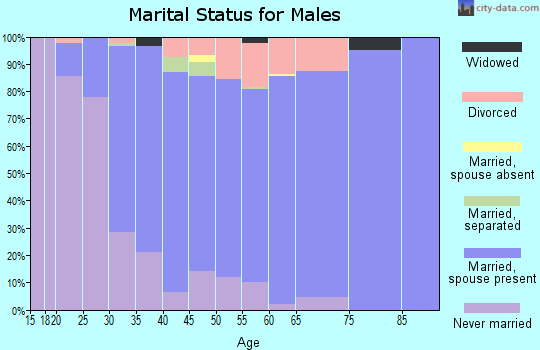 Zip code 17327 marital status for males