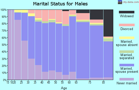 Zip code 17331 marital status for males