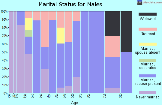 Zip code 17344 marital status for males