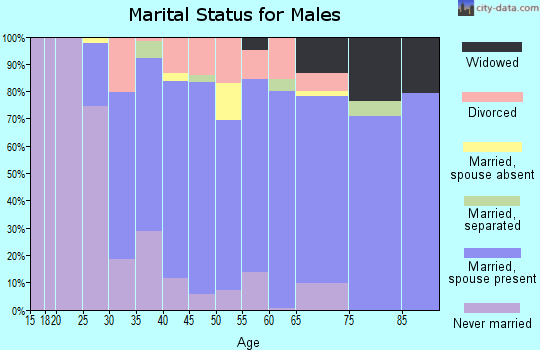 Zip code 17345 marital status for males