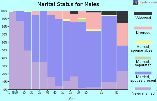 Zip code 17517 marital status for males