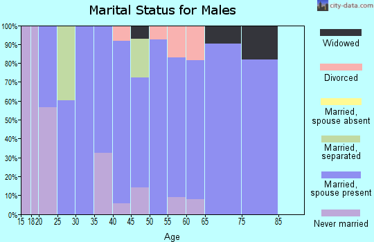 Zip code 17560 marital status for males
