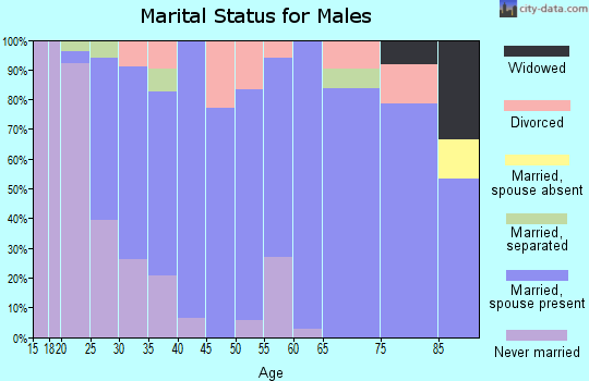 Zip code 17772 marital status for males