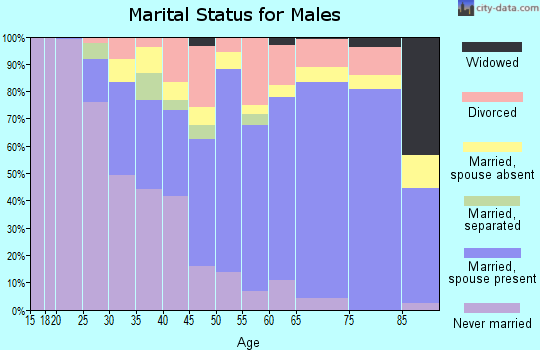 Zip code 17837 marital status for males