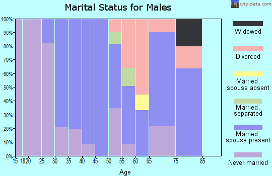 Zip code 17881 marital status for males