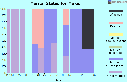 Zip code 17884 marital status for males