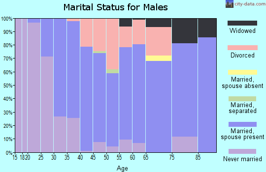 Zip code 17922 marital status for males