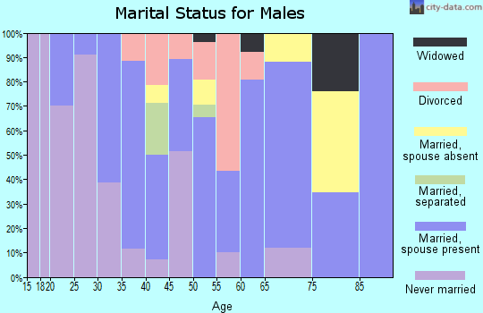 Zip code 17935 marital status for males