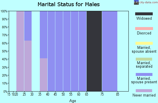 Zip code 17944 marital status for males