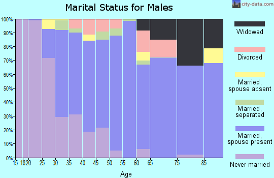 Zip code 17961 marital status for males