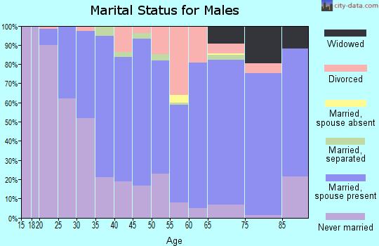 Zip code 17972 marital status for males