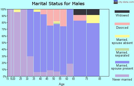 Zip code 18074 marital status for males
