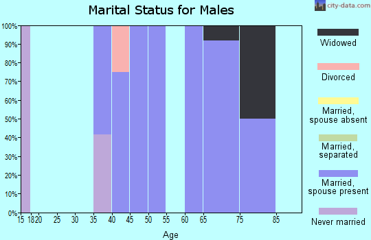 Zip code 18256 marital status for males